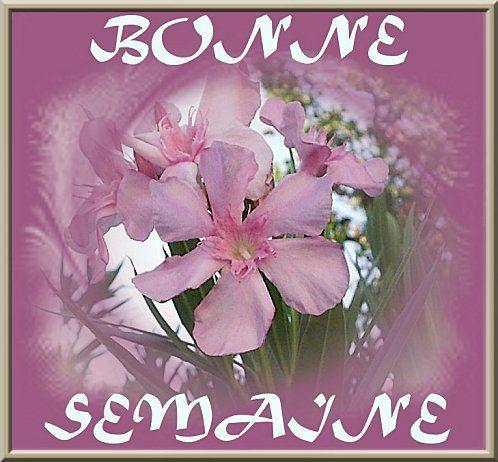 Bon-Semaine-70.jpg